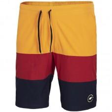 Pánske plavecké šortky 4F